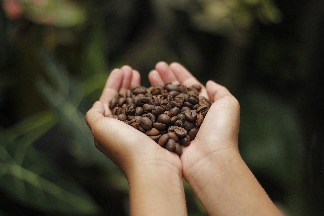 Pijte kávu, a budete zdravější!